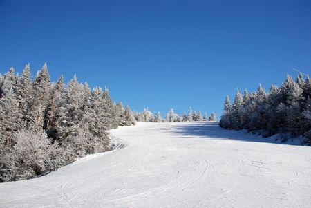 Ski slope on tree covered mountain side photo