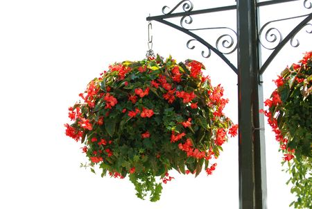 post: Flower basket on a post