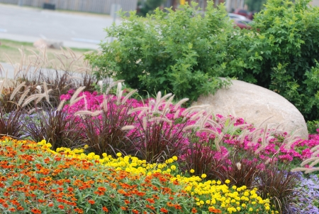 appeals: Landscaped flower garden with a rock and variuos flowers