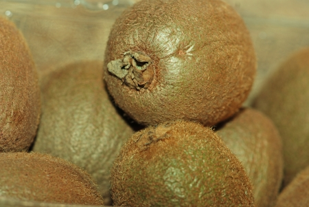 Kiwi fruits Stock Photo - 16726683