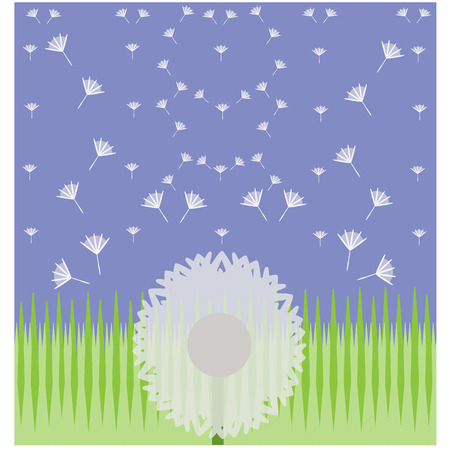 This is dandelion flower.It is a flower of hope.