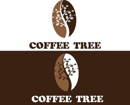 coffee tree: coffee tree