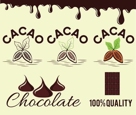 set of cacao beans and chocolate Vector