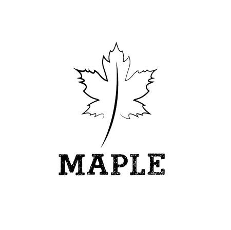 quercus: maple leaf vector design template