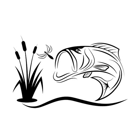 jumping bass for dragonfly Vector