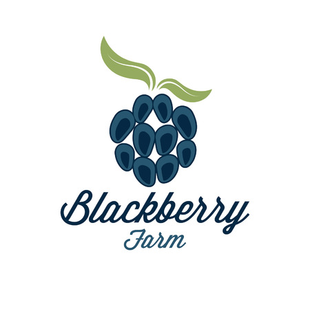 mure: blackberry illustration agricole