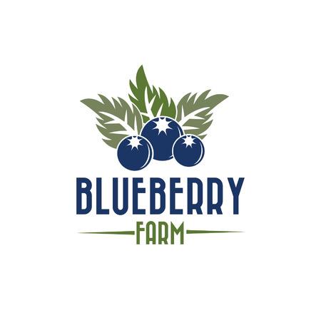 blueberry farm illustration Vector