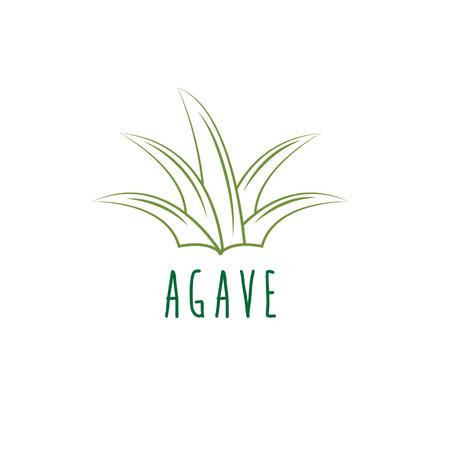 agave: vector agave plantilla de dise�o Vectores