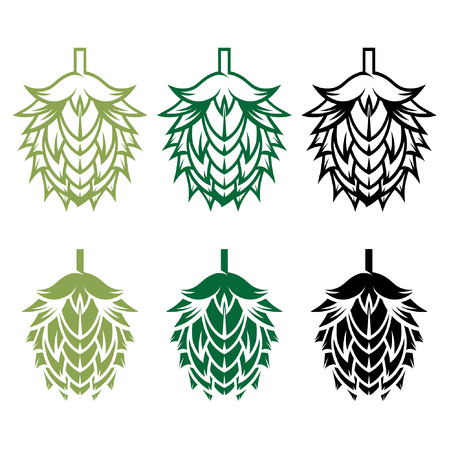 Hops vector design template