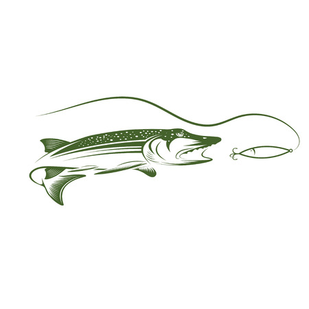 pike and lure design template