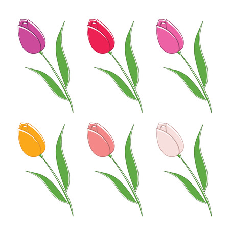 margerite: Illustration set of beautiful colour flowers. Vector