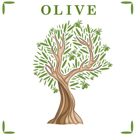 Illustratie van de olijfboom. Vector