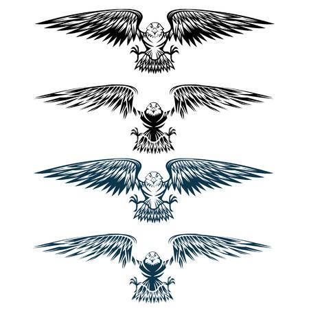 eagle flying: eagles set vector design template