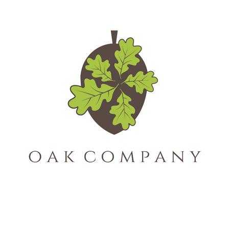 tree isolated on white background: Illustration of oak tree icon. vector