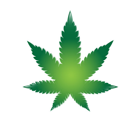 cannabis leaf: Illustration of cannabis leaf. Vector Illustration
