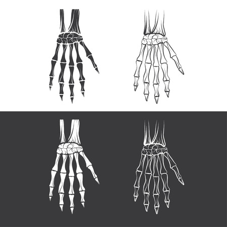 scheletro umano: set di mani scheletriche