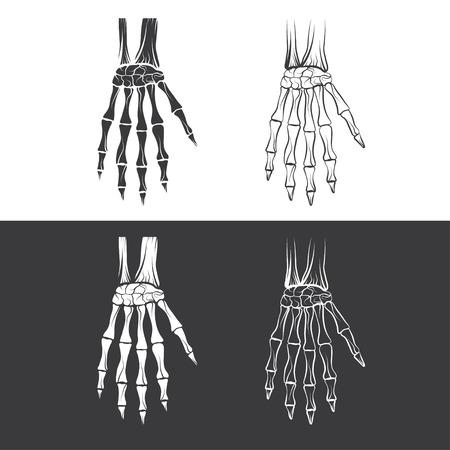 human toe: set of skeleton hands