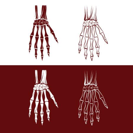 talus: set of skeleton hands