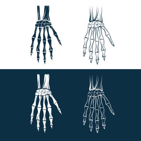 set of skeleton hands