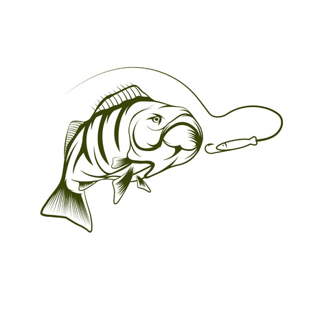 perch: bass and lure vector design template Illustration