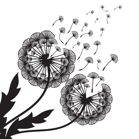 Illustration of concept dandelion. Vector 向量圖像