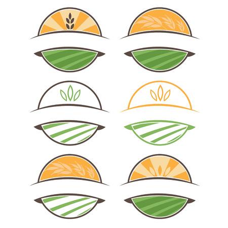 organic fruit: Set of illustration farm labels.Vector