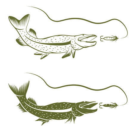 pike: set of pike and lure vector design template