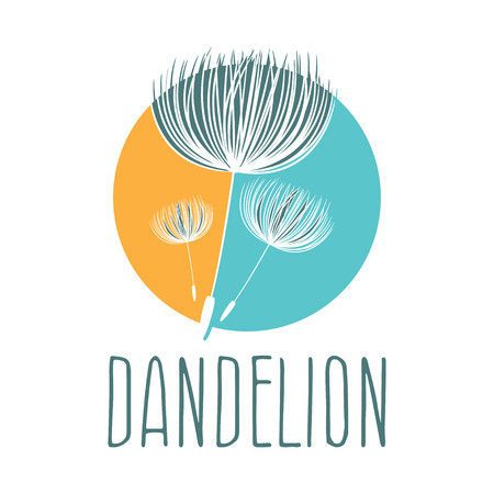dandelion flower: Abstract fluffy dandelion flower . Vector illustration Illustration