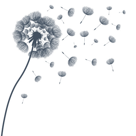 Abstract fluffy dandelion flower. Vector illustration