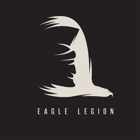 negative space: negative space vector concept of spartan head in wing of eagle