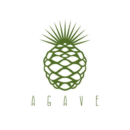 agave: vector plantilla de dise�o de la planta de agave