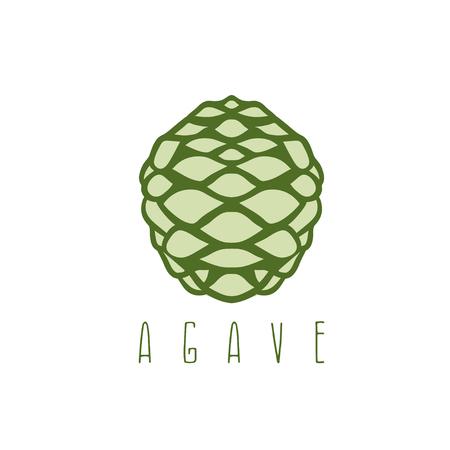agave: vector de dise�o de la plantilla de la ra�z de agave