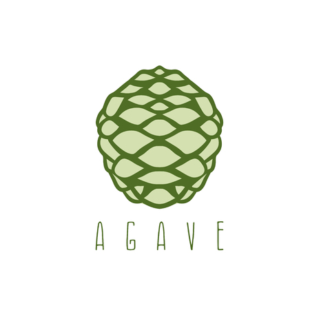 agave: vector design template of the agave root