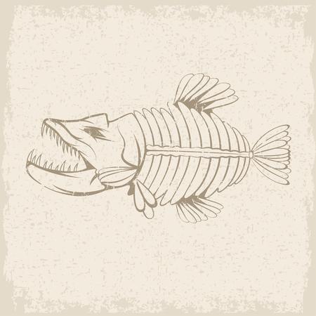 largemouth: grunge vector design template of aggressive tropical fish skeleton Illustration