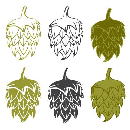 vector set design template of beer hops