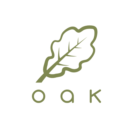 vector design template of the oak leaf