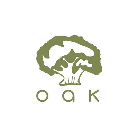 vector design template of the oak tree