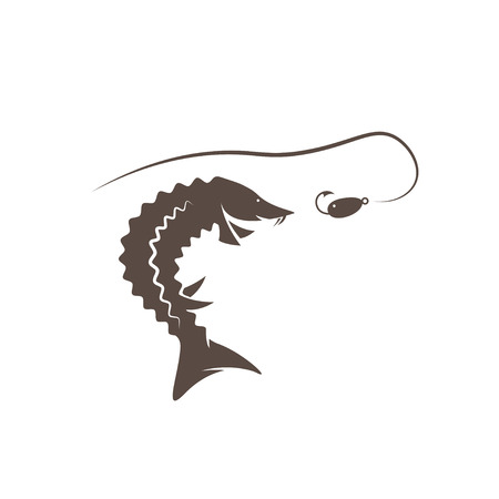 spawning: sturgeon fish and lure vector design template