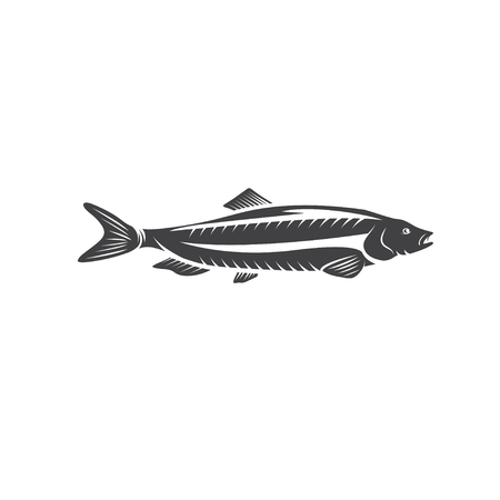 pilchard: Herring fish vector design isolated on a white background Illustration