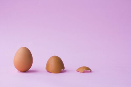 Chicken egg in a raw with eggshell on pink background, Close up concept.. Foto de archivo