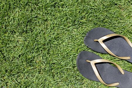 Pair of black beach casual slippers on green grass or meadow background, summer flip flop concept, woman sandals, female footwear, top view, copy space