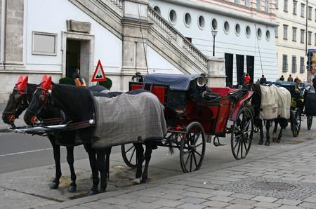 Fiacre in Wenen, Oostenrijk