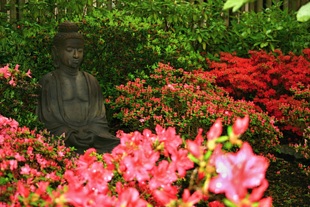 Standbeeld in Rhododendron