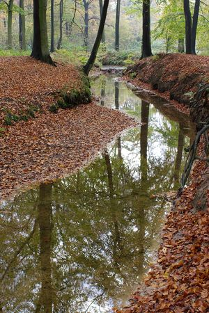 autumnally: A small creek in autumn. Taken in DuisburgGermany. Stock Photo