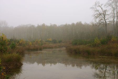 autumnally: A pond in DuisburgGermany, taken in mild mist. Stock Photo