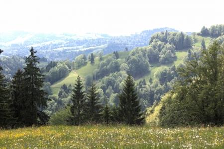 thaler: Highlands