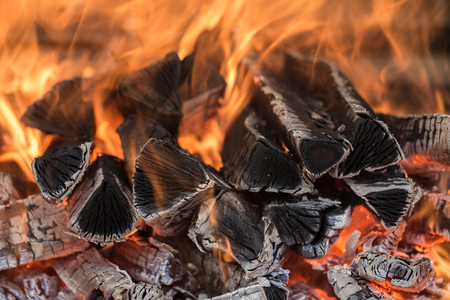 smolder: the fire on the wood, charred wood, ash