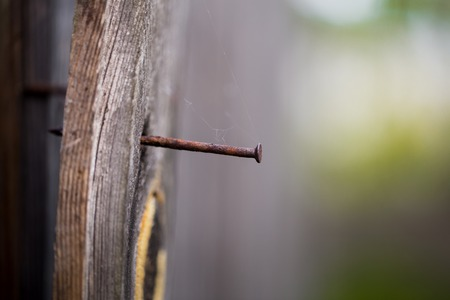split rail: old wooden Board with a rusty nail, macro shooting