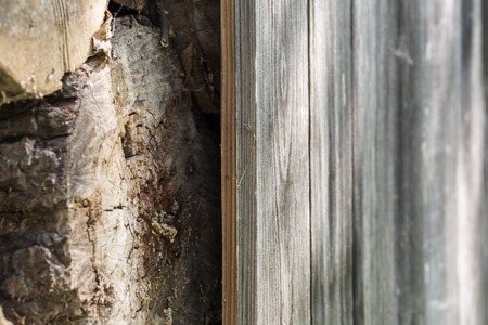 panel ling: old wooden fence and the wood, excellent wooden background