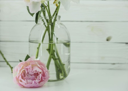 bonbonniere: beautiful fresh peonies flowers in glass jar on wooden white background Stock Photo